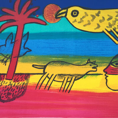 corneille-sunbird-02