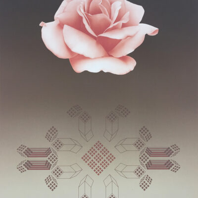 haiden-david-rose-matrixVIII-01